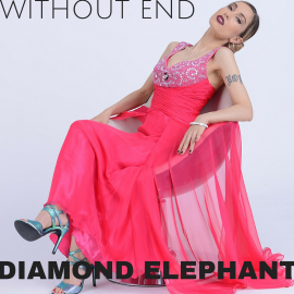 Diamond Elephant Cover WE II Higher Quality Web